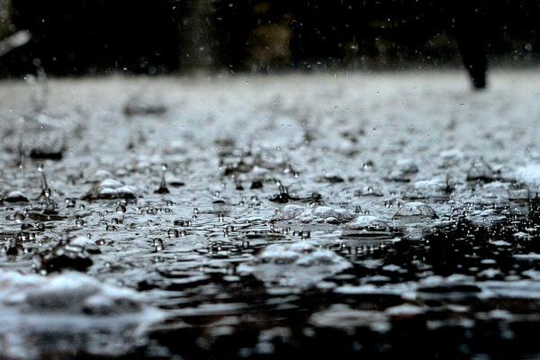 Yağmur Neden Kokar?