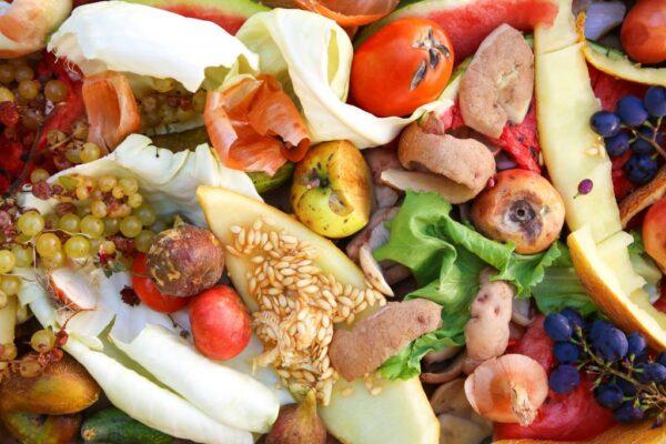 Gıda İsrafı Nedir