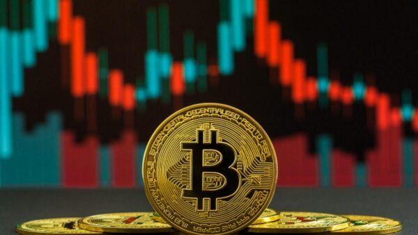 bitcoin ve daha büyük aptal teorisi