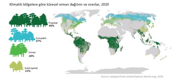 Ormancılık Haritaları