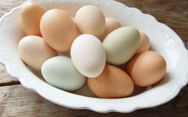 Kahverengi ve Beyaz Yumurta