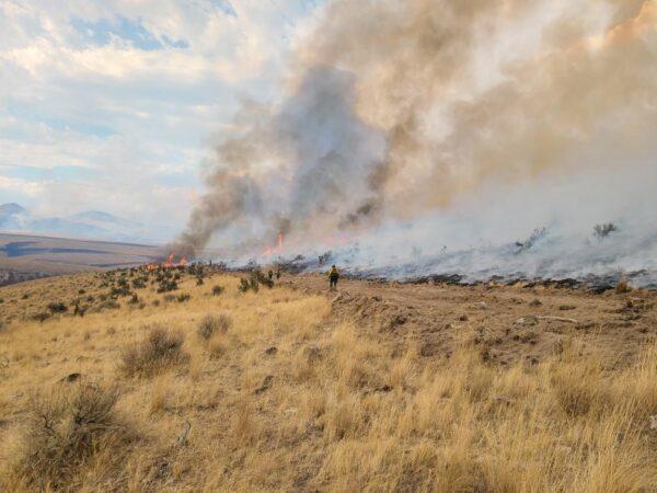 Orman Yangınları Nasıl Önlenir