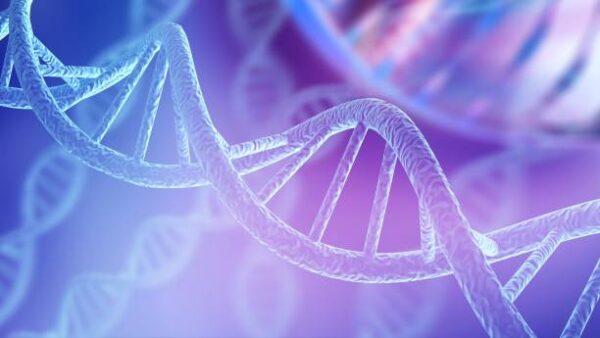 İnsan DNA'sı Değişebilir Mi